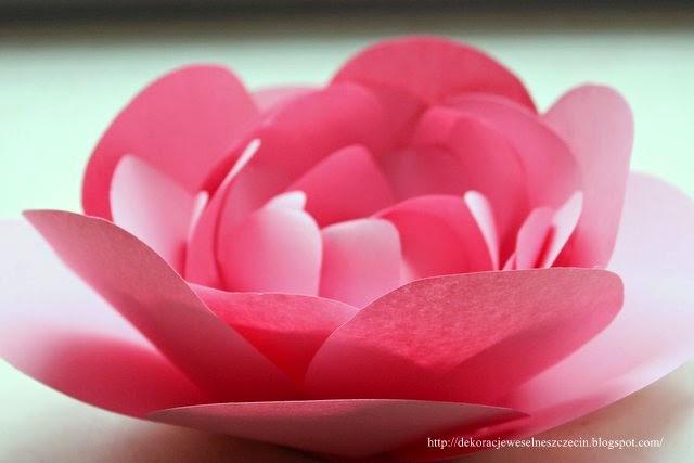 http://dekoracjeweselneszczecin.blogspot.com/2015/03/diy-rozowy-papierowy-kwiat-krok-po-kroku.html