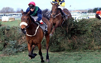 Grand National 1996: Rough Quest