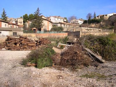 Sant Antoni 2009 fotos de Lluis Belsa