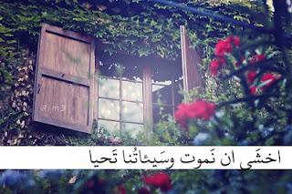 منشورات مصورة للفيس بوك , بوستات فيس بوك , صور للفيس بوك