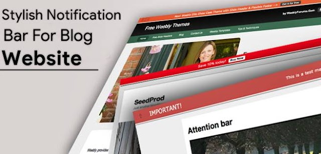 How to Add Stylish Notification bar On Blog Website