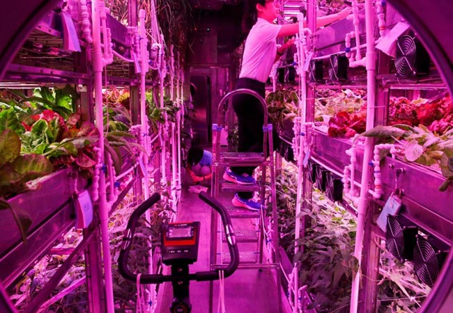 Tinuku China launches new space-breeding research center