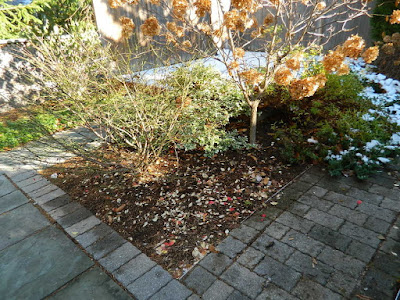 St. Clair West Village Fall Backyard Cleanup After by Paul Jung Gardening Services--a Toronto Gardening Services Company