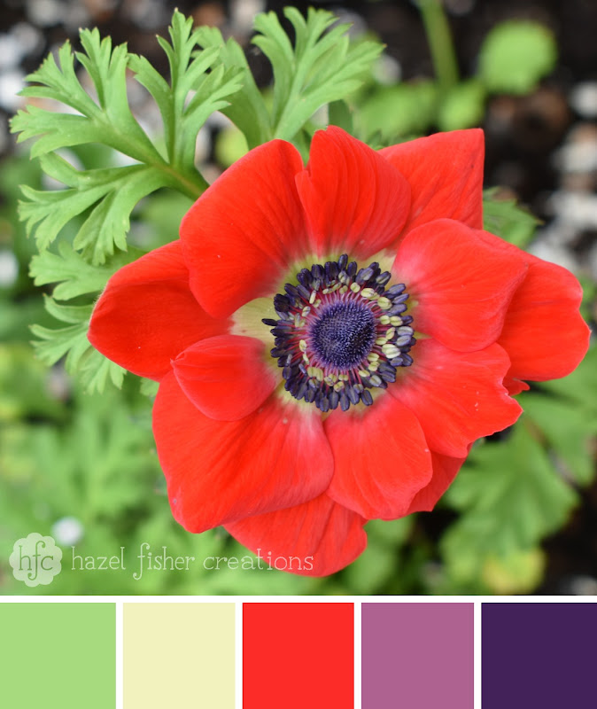 Colour Palette 29 Red Anemone by Hazel Fisher Creations