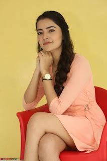 Rukshar Mir in a Peachy Deep Neck Short Dress 082.JPG