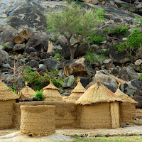 Image of Cameroon straw dwellings.