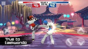 Taekwondo Game MOD APK Unlimited Money