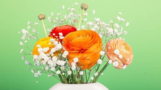 Casa linda com flores