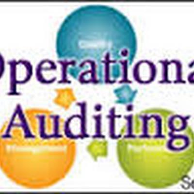 Apip Sejarah Audit Operasional Pemerintah