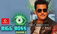 Latest Some possible contestants of Bigg Boss 7