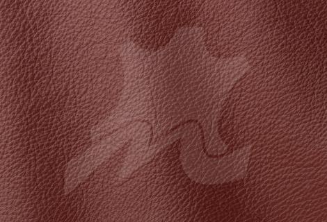 Piele - naturala - tapiterie - canapele - Bucuresti - Prescott-Antique-232