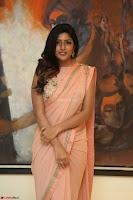 Eesha Rebba in beautiful peach saree at Darshakudu pre release ~  Exclusive Celebrities Galleries 068.JPG