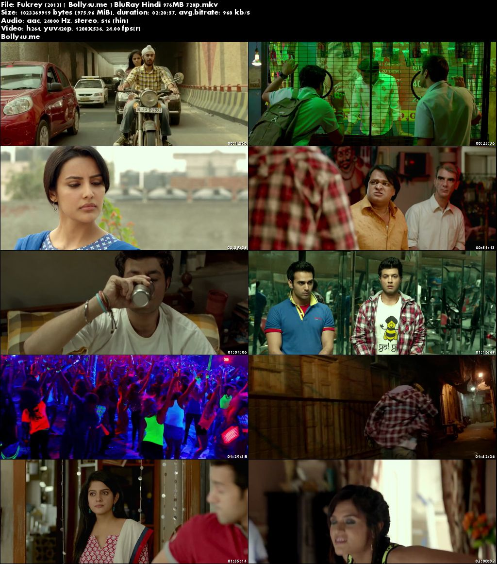 Fukrey 2013 BluRay 400Mb Full Hindi Movie Download 480p
