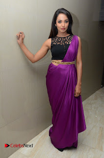 Actress Tejaswi Pictures in Saree at Rojulu Marayi Movie Audio Release Function  0068.JPG