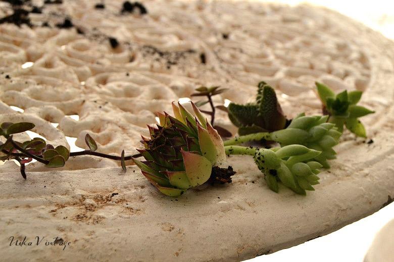 Diy fácil y resultón con macetas vintage numeradas para unos cactus y plantas pequeñas