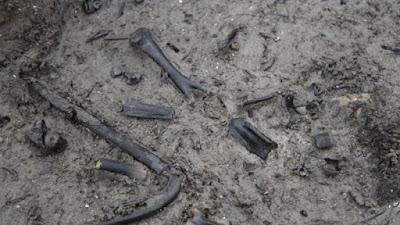 New finds at Britain's Bronze Age 'Pompeii'