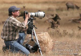 Tutorial Fotografi Jarak Jauh atau Tele Photography