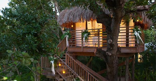 Romantic Tree House For Wedding