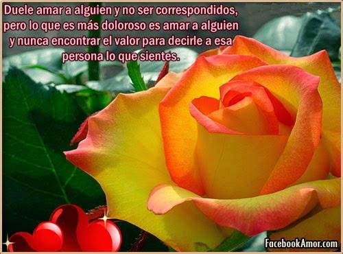 Imagenes Bonitas De Flores Con Frases: IMAGENES DE AMOR PARA MURO FACEBOOK HERMOSAS FLORES