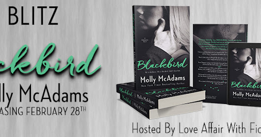 Teaser ~ Blackbird by Molly McAdams