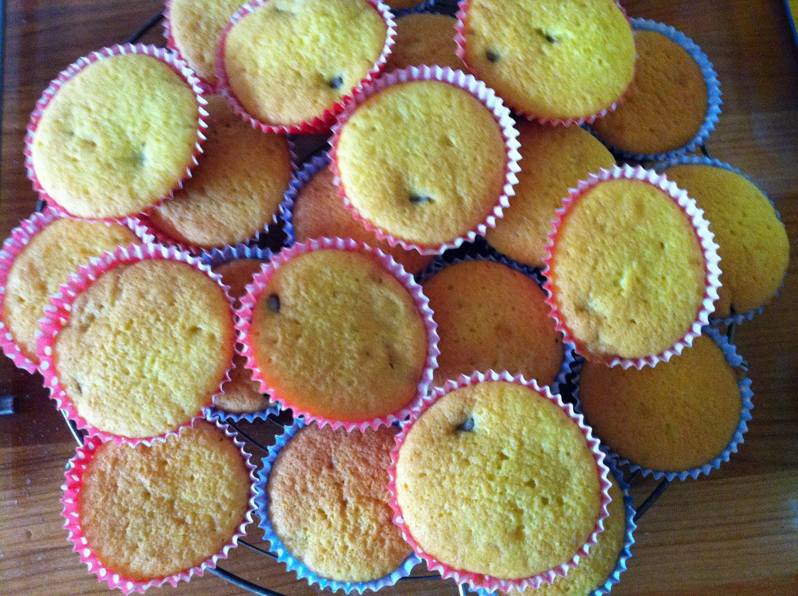 Bakes A Lot Lady Chocolate Chip Fairy Cakes