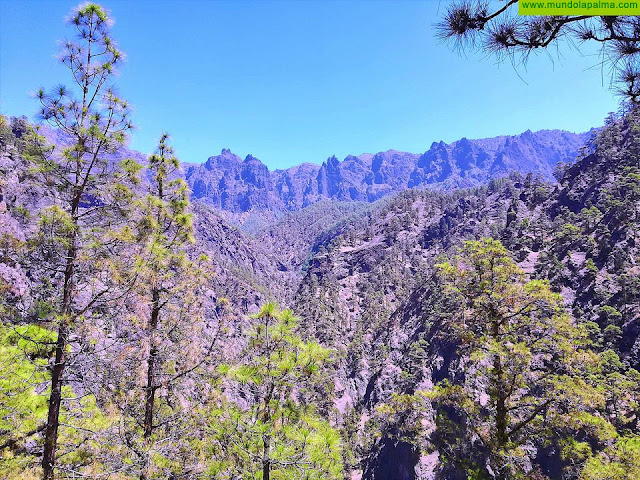El Consejo Científico de la Reserva Mundial de la Biosfera La Palma se reúne para abordar temas de la actualidad de la Isla y de la Fundación