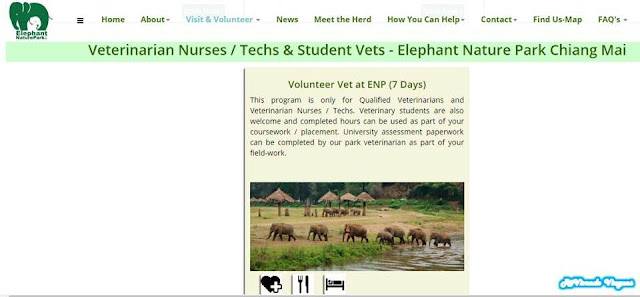 Voluntariado no Elephant Nature Park