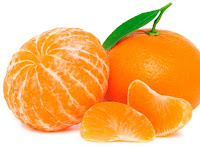 orange - une orange - Citrus sinensis