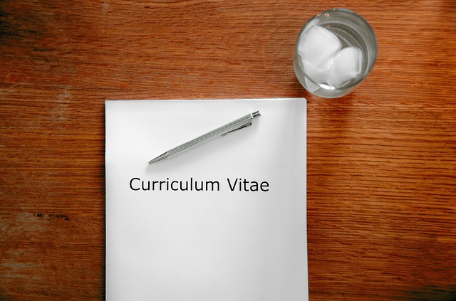 contoh curriculum vitae bahasa inggris
