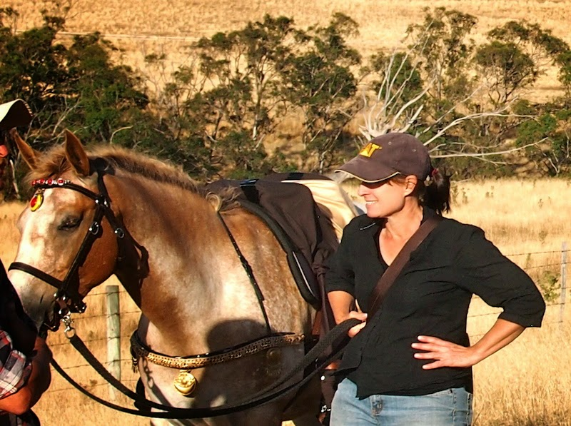 How do Horses Learn? | Horse Journals