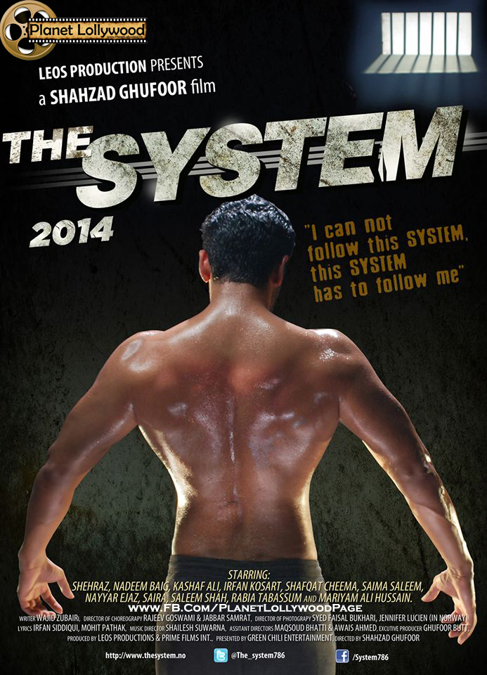 The System (2014) Pakistani Movie Download / Online In 300MB