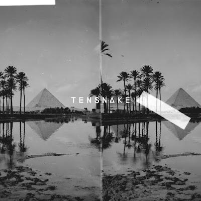 Tensnake - Desire