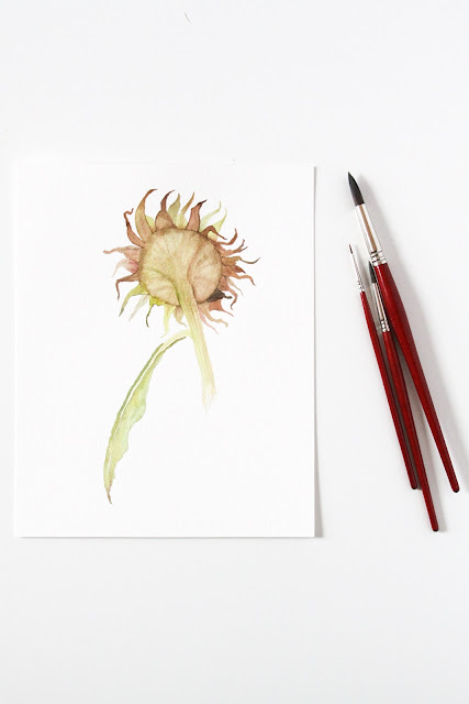 watercolor, sunflowers, autumn, Anne Butera, My Giant Strawberry
