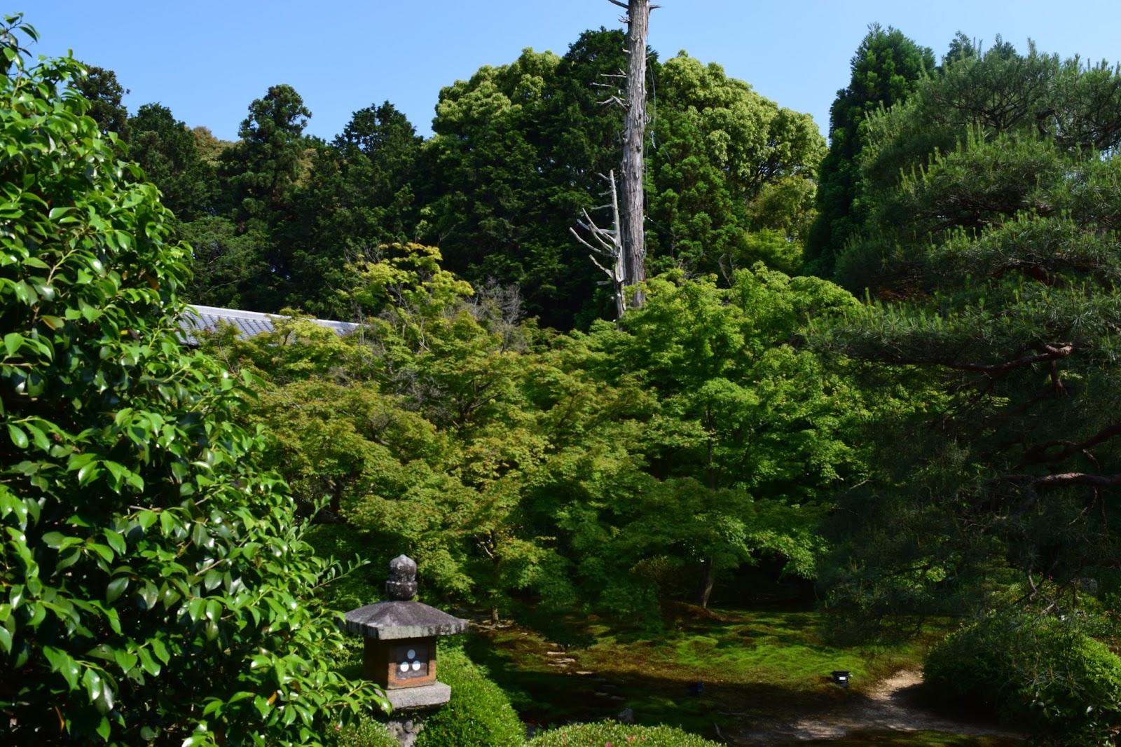 Unryuuin Garden