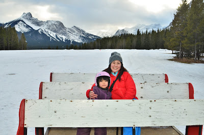 Boundary Ranch Sleigh Ride in Kananaskis Valley