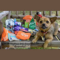 BlogPaws Dog Swag giveaway