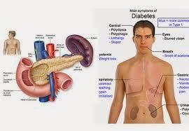 Obat Terapi Diabetes Melitus
