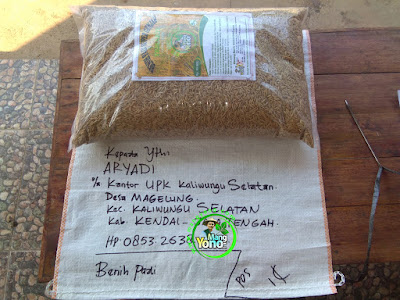 Benih pesanan ARYADI Kendal, Jateng.  (Sebelum Packing)