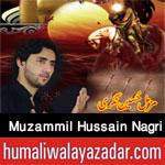 http://www.humaliwalayazadar.com/2017/09/muzammil-hussain-nagri-nohay-2018.html