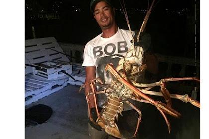 Lobster Terbesar di Dunia Ditangkap di Laut Bermuda