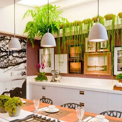 Tips For Decorating The Kitchen With Hanging Plants 3