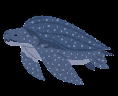 オサガメのイラスト(亀)