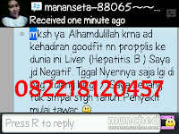 obat hepatitis, obat herbal liver, obat herbal hepatitis