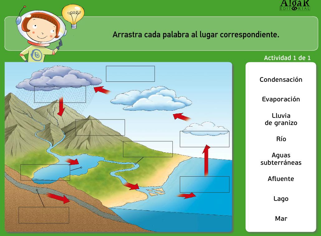 http://www.primerodecarlos.com/TERCERO_PRIMARIA/archivos/actividades_natura_tercero/2/2.swf
