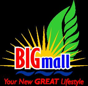 Lowongan Kerja Big Mall