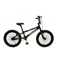 20 exotic 9982xt 30 bmx fat tire