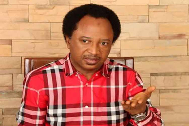 Buhari must disinfect his govenment- Shehu Sani