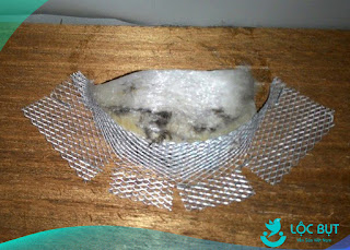 Tổ yến giả làm bằng lưới inox 304.