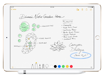 iPad Pro 2 Guide