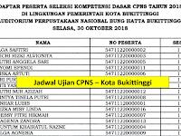Jadwal dan Nama Peserta UJIAN CAT CPNS 2018 - Kota Bukittinggi, Download Disini !!!